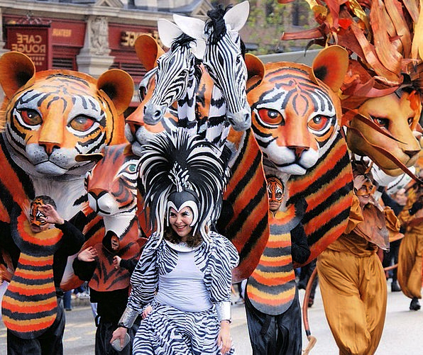 Tiger Cover Costume Clothing Mask Parade Processio