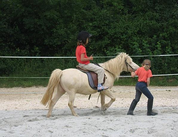 Children Broods Trip Pony Ride Horse Mount Child C