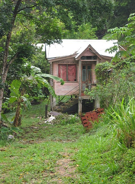 Hut Shed Plantation Estate Caribbean Bananas Crazy