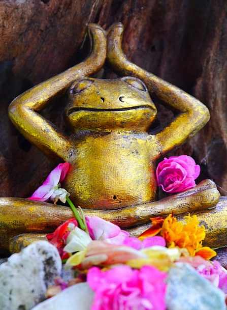 Frog Flowers Plants Yoga Sculpture Statue Decorati