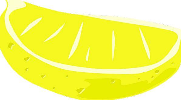 Lemon Wedge Drink Ovary Food Food Nourishment Frui