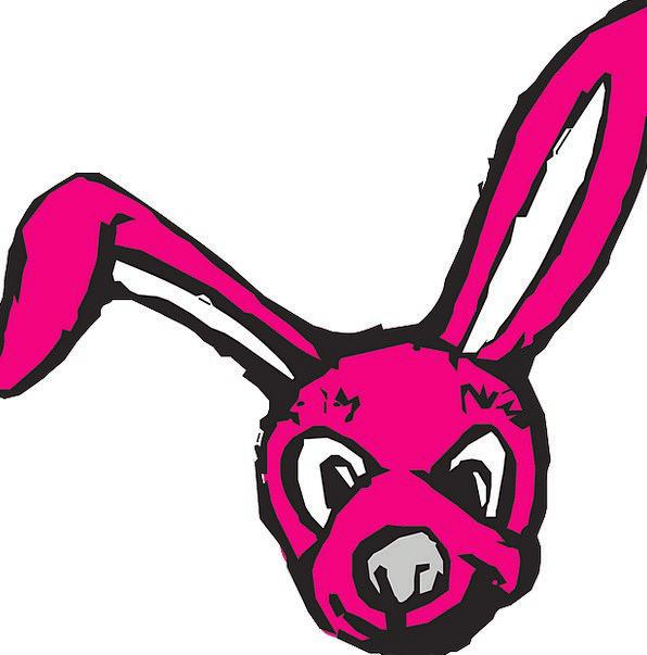 Bunny Rabbit Skull Red Bloodshot Head Animal Physi