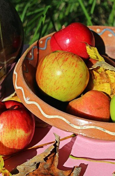 Apple Garden Plot Casserole Dish Harvest Crop Autu
