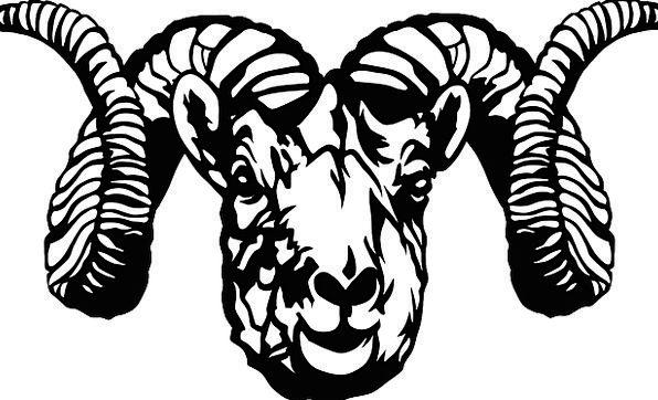 Sheep Ewe Skull Mind Head Free Vector Graphics Fac