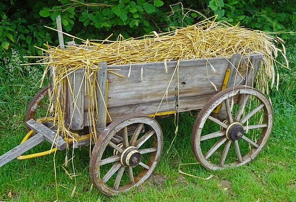 Straw Carts Drink Food Routes Ways Straw Car Cerea