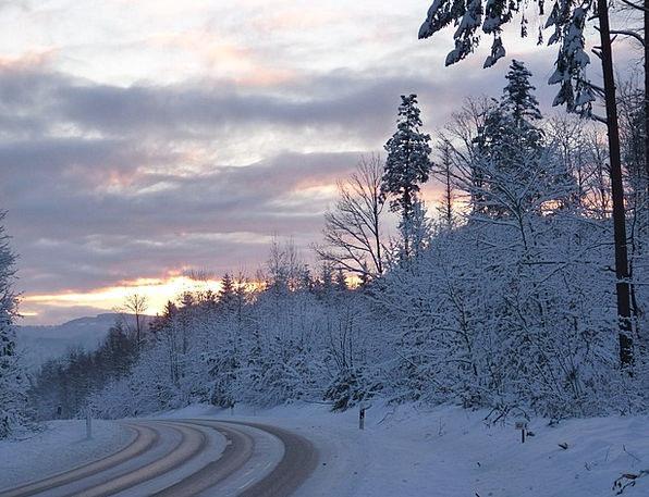 Winter Season Traffic Plants Transportation Snow S