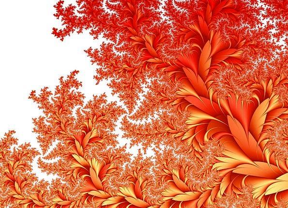 Flora Vegetation Textures Plants Backgrounds Backg