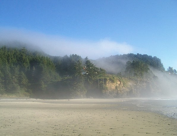 Sand Storm Vacation Travel Windy Blustery Oregon C