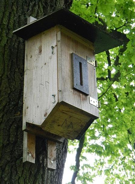 Nesting Box Birdcage Bird Feeder Aviary Tree Sapli