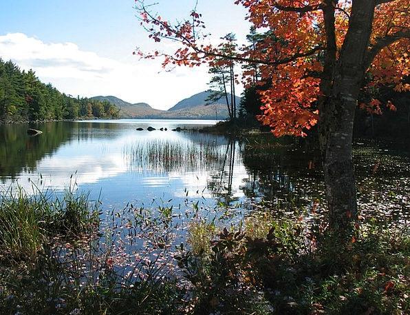 Maine Landscapes Nature Water Aquatic Eagle Lake S