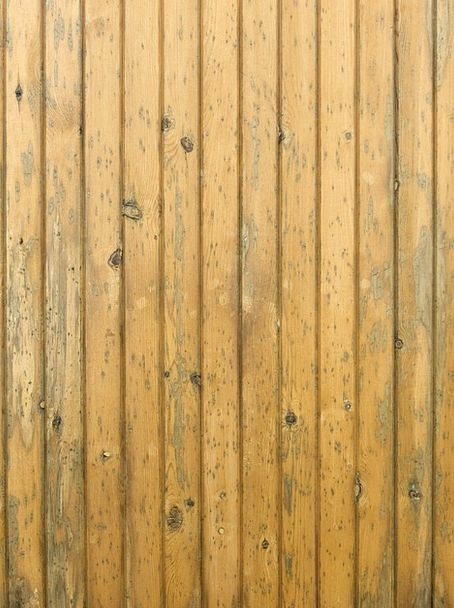 Wood Timber Textures Panels Backgrounds Texture Fe