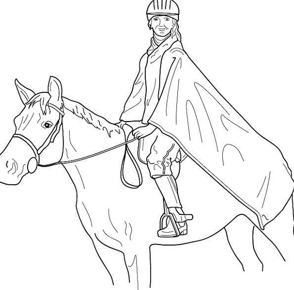 Horse Mount Proviso Jockey Rider Free Vector Graph