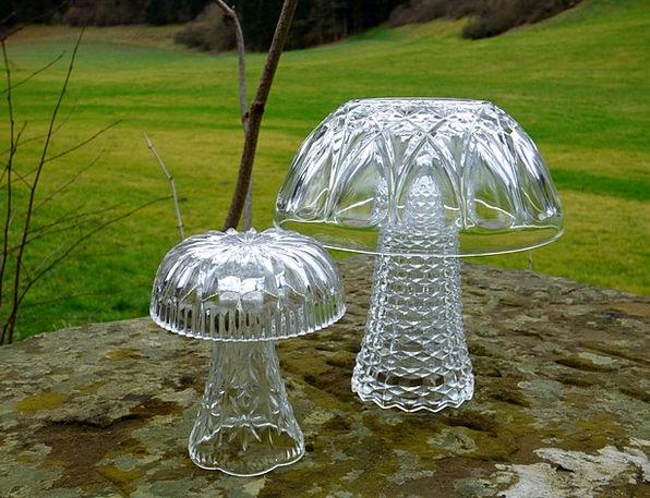 Mushroom Burgeon Decoration Beautification Glass M