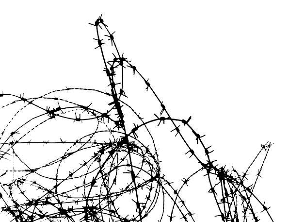 Barbwire Border Edge Fense Wire Cable Protection Black And