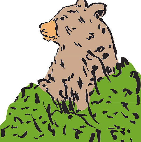 Bear Tolerate Ursus Brown Bear Ursidae Free Vector