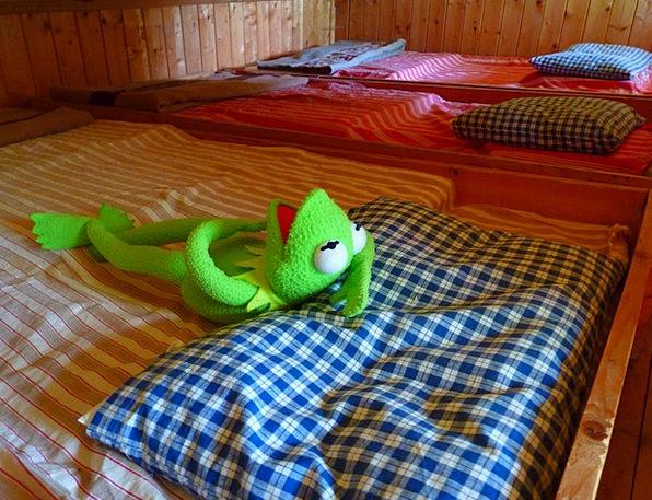 Frog Tired Weary Kermit Sleep Slumber Bed Divan