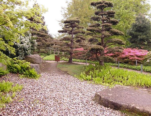 Japanese Garden Plot Away Absent Garden Applied Pr