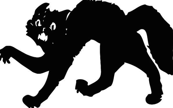 Cat Feline Frightened Hunched Curved Scared Free V
