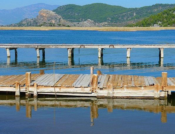Web Mesh Understand Jetty Breakwater See Water Aqu