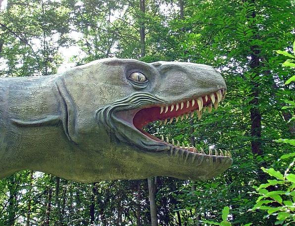 Dinosaur Relic Carnivores Flesh-eaters Prehistoric