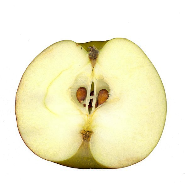 Apple Drink Food Fruit Ovary Scanners Garden Plot