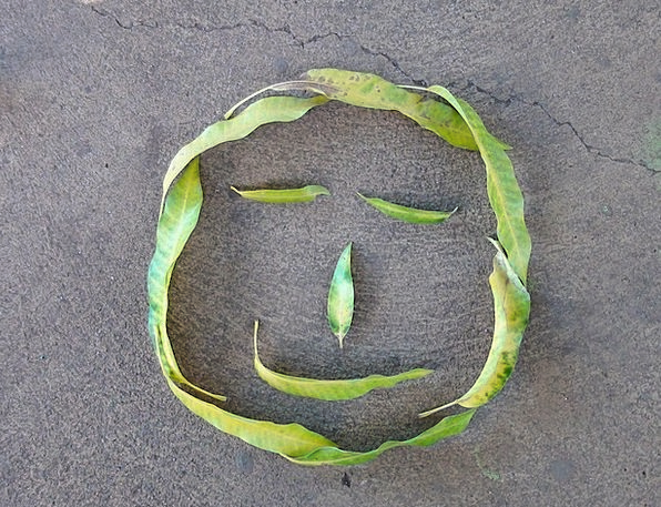 Leaves Greeneries Beam Face Expression Smile Emoti