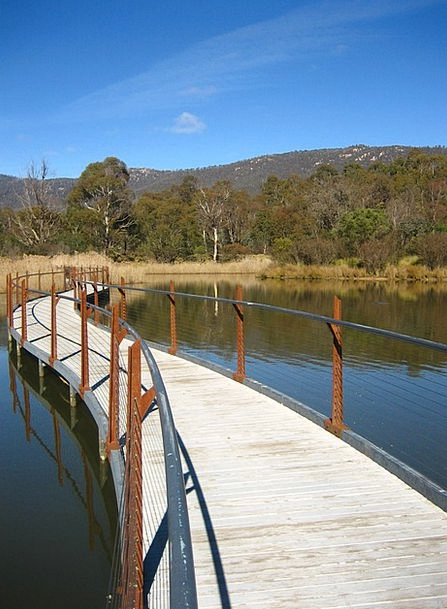 Australia Landscapes Path Nature Nature Countrysid