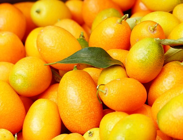 Kumquats Drink Ovaries Food Fruit Ovary Fruits Dar