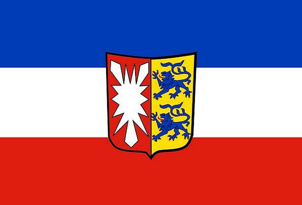 Flag Standard Variant Irregular Schleswig-Holstein