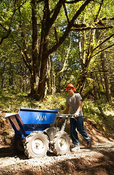 Hard Work Donkeywork Work Construction Worker Labo