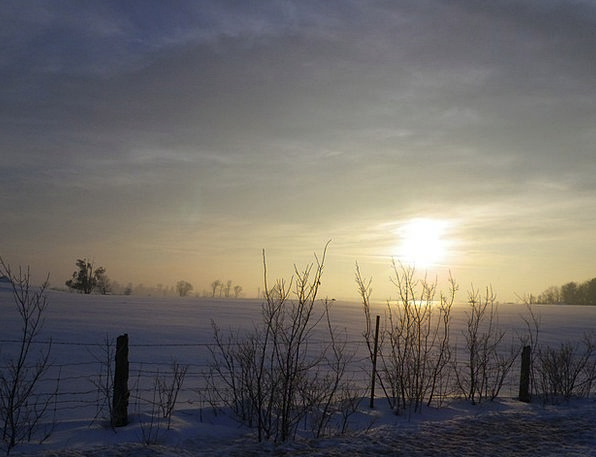 Morning A.m. Landscapes Nature Snow Snowflake Sun