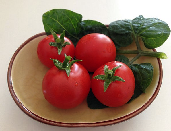 Tomato Drink Food Vegetable Plant Small Tomato Red