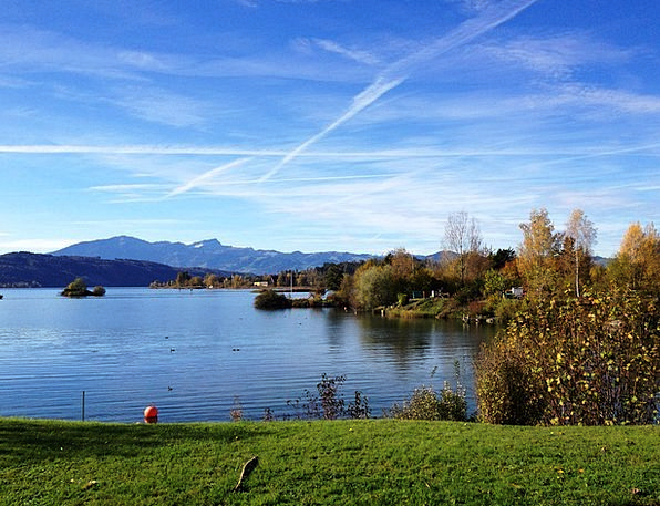 Lake Zurich Landscapes Nature Recovery Retrieval R