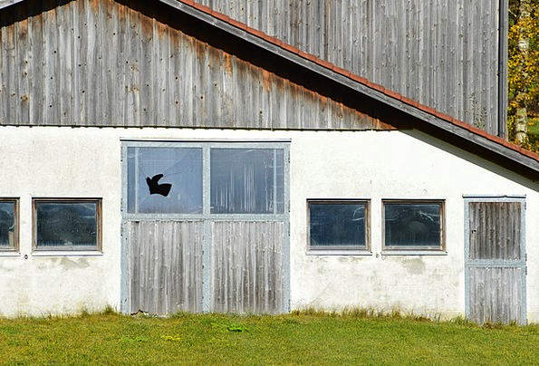 Barn Outbuilding Farmhouse Leave Permission Farm R