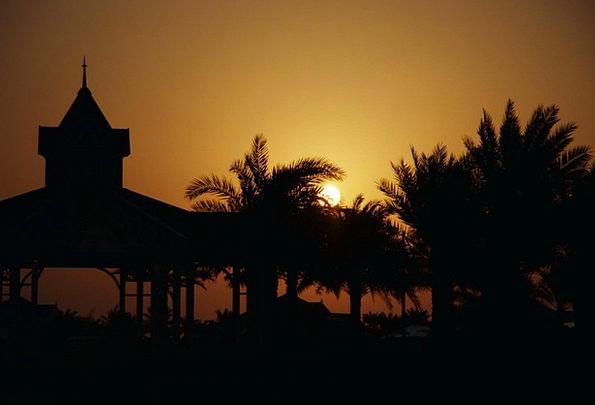 Sunset Sundown Vacation Rotunda Travel Palm Trees