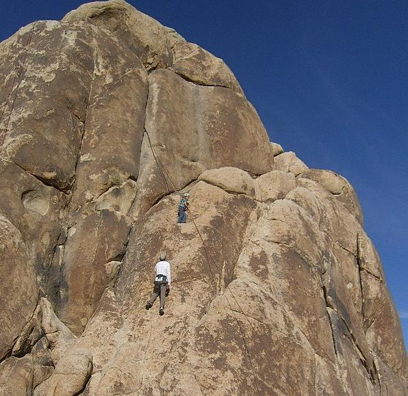 Joshua Tree Mojave Desert National Park Goal Setti