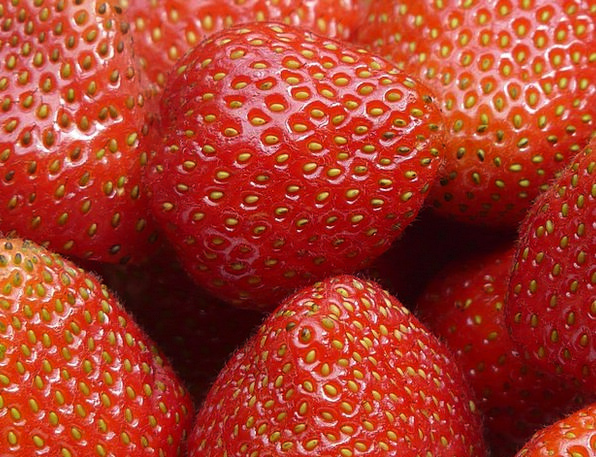 Red Bloodshot Drink Food Fruits Ovaries Strawberri