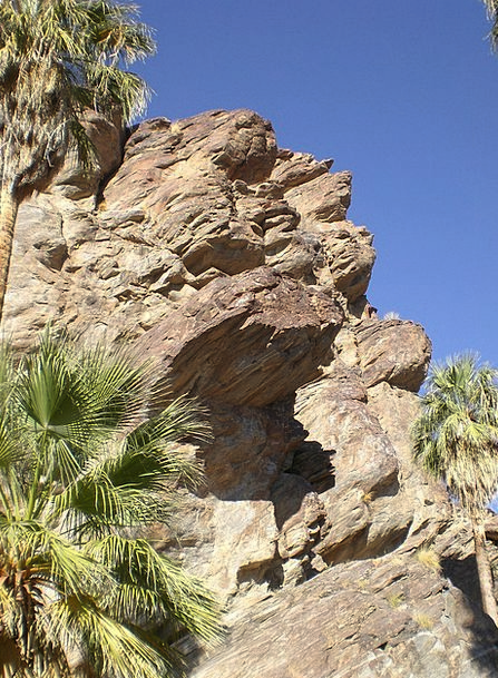 Palm Cayon Landscapes Nature Nature Countryside Ca
