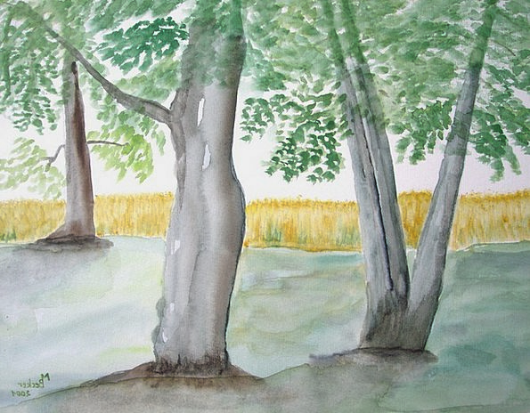 Trees Plants Landscapes Woodland Nature Painting F