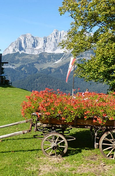 Cart Wagon Wilderkaiser Floral Decorations Romanti