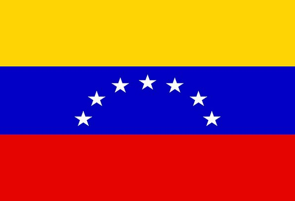 Flag Standard Country Republic Venezuela Nation St