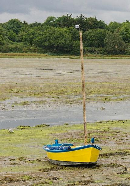 Boat Ship Creamy Gulf Of Morbihan Yellow Brittany