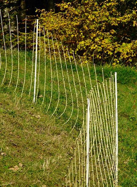 Fence Barrier Pasture Pasture Fence Demarcation Se