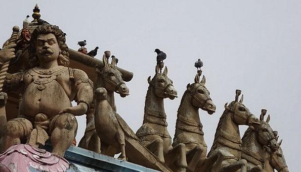 Statue Figurine Cattle Deities Divinities Horses B