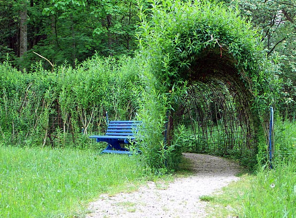 Plant Tunnel Landscapes Absent Nature Promenade Wa & Plant Tunnel Landscapes Absent Nature Promenade Walkway Away ...