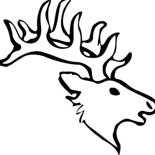 Reindeer Skull Black And White Head Wildlife Horns