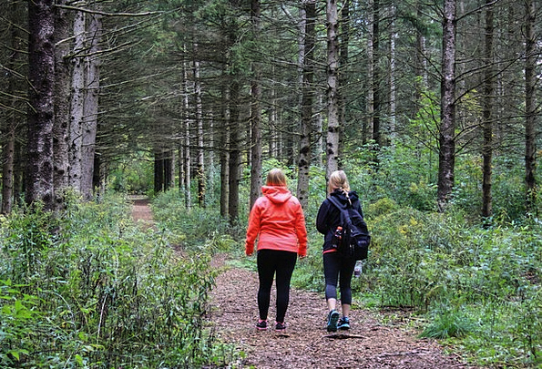 Women Females Landscapes Lassies Nature Hiker Walk