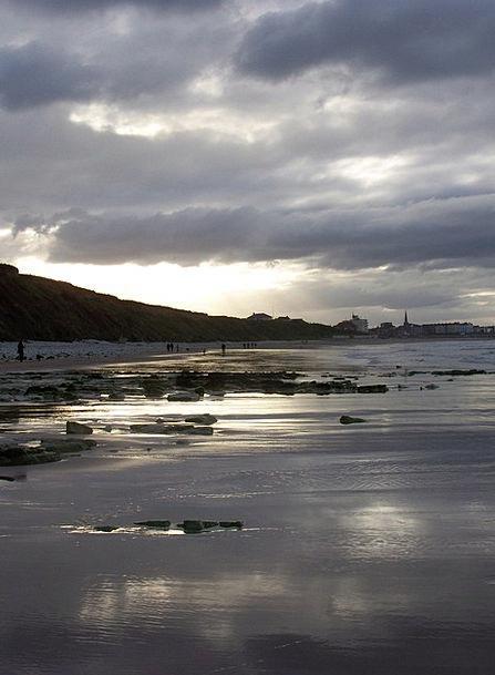Beach Seashore Vacation Shore Travel Sea Marine Co