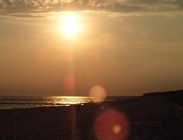 Beach Seashore Vacation Travel Water Aquatic Sun B