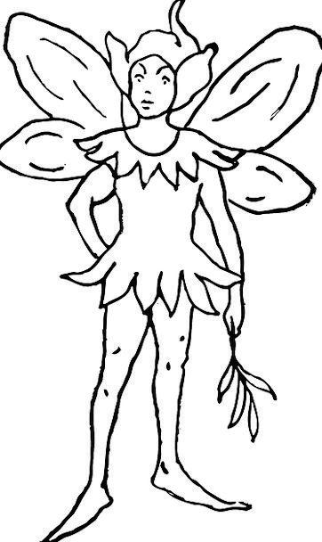 Fairy Pixie Imaginary Elf Fantasy Elfin Sylphlike